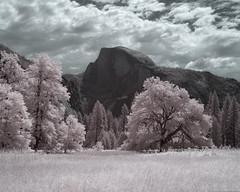 Phantom Half Dome (Tyson Poeckh) Tags: yosemite national park half dome mountain sierra infrared granite valley