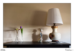 Still (Raul Kraier) Tags: still cats lamp flowers vases flower canon6dmarkii sigmaart35mmf14 canon sigma shadows myprivateworkroom light ambience