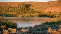 Fish Lake (BLMOregon) Tags: blm bureauoflandmanagement fishlake fishing recreation camping campground steensmountain oregon harneycounty hiking swimming highdesert burns