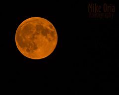 Orange Moon (mikeSF_) Tags: moon night longexposure mikeoria mikeoriaphotography wwwmikeoriacom a600 600mm 645 645z pentax645z lunar fullmoon orange