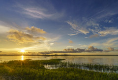Sea Island Sunset (RobertCross1 (off and on)) Tags: a7rii alpha beaufort datawisland emount fe1635mmf4zaoss ilce7rm2 sc sony south southcarolina atardecer bluesky clouds fullframe landscape marsh mirrorless puestadelsol sky sun sunset water wetland