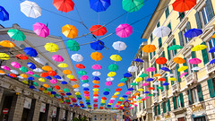 Genova-5098 (guavilab) Tags: blue street umbrella sky colors
