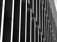 Rhapsody (YIP2) Tags: diagonal window windows facade abstract minimal minimalism simple less line linea detail pattern lines geometry design architecture building repetition eur rotterdam erasmusuniversity campus bw monochrome blackandwhite