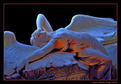 Angel (cienne45) Tags: carlonatale natale genoa liguria italy cemetery staglienocemetery sculpture funeraryart cienne45 cemeteryofstaglieno staglieno cimiterodistaglieno cemeteries cimiteri femininefigure burialmonument zena famigliaribaudo ribaudotomb ribaudo onoratotoso toso angel aplusphotoex ghesemmu graves stone statue graveyard tombstone cementerio friedhof cimetìere monumentale sculture sculptures friends camposanto camposantostaglieno camposantodistaglieno friedof cemitério cimitiere monumentalfriedofstaglieno monumentalfriedhofstaglieno cimitière weekofdiscoveringeuropeancemeteries settimanadeicimiteristorinieuropei artonflickr artefuneraria monumental