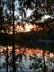 Day 207 (kostolany244) Tags: 3652018 onemonth2018 july day207 2672018 kostolany244 samsunggalaxys5 europe germany geo:country=germany month lake sunset trees 365the2018edition