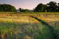 Peace In The Meadow (59roadking - Jim Johnston) Tags: ifttt 500px field rural scene countryside meadow summer chapel