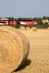 43272.Sutton.7.8.18 (deltic17) Tags: countryside hay bales field hst 125 train express lner intercity125 summer hot summer2018 canon