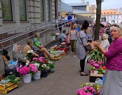 Vilnius Lithuania / Flower market (Pantchoa) Tags: vilnius lituanie marché fleurs paysannes femmes rue photoderue