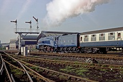 4498, Burnden Junction, Bolton, June 1984 (David Rostance) Tags: 4498 60007 gresley lner classa4 bolton burndenjunction semaphorsignals signalbox theclitheronian