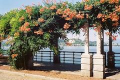 Arona, Luglio 2018 (sirio174 (anche su Lomography)) Tags: arona lago lake lagomaggiore gita estate summer italia italy