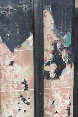 Dunbar-18081137 (Lee Live: Photographer (Personal)) Tags: dunbar dunbartownhouse firthofforth fishingboats harbour kidsplaying leelive leesimpson limetreewalkbeach lukesimpson marine ourdreamphotography playground propeller rachelsimpson sanddunes scotland shirleysimpson swimminginthesea tyninghamebeach wwwourdreamphotographycom