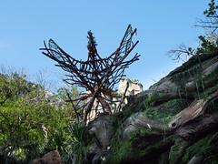 1608 Disney's Animal Kingdom12 (nooccar) Tags: 1806 animalkingdom devonadams devoncadams devonchristopheradams disney disneyworld disneysanimalkingdom june june2018 devoncadamscom devoncadamsgmailcom