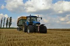 DSC_8398 (anetaležáková) Tags: summer sunset summerharvest sunnydays harvest agriculture agriphoto czechagri caseihpuma case casepuma165 caseoptum casepuma200 claas claaslexion newholland