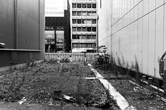 Ginza behind the scenes (tokyobogue) Tags: tokyo japan ginza nikon nikond7100 d7100 sigma sigma1750mmexdcoshsm behind backstreets street streetphotography urban city blackandwhite blackwhite monochrome construction