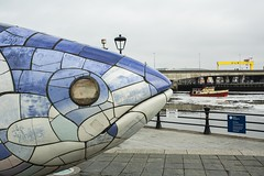 18MAR12 SLYNNLEE-7029 (Suni Lynn Lee) Tags: belfast northern ireland bigfish salmonofknowledge fish salmon sculpture history culture blue johnkindness donegallquay river lagan