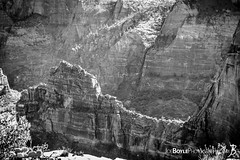 """Friday's JBP Photo of the Day! """"Cliff Near Angel's Landing - Black & White"""" (Joe Boyle Photography) Tags: jbpphotooftheday jbp interiordesign interiordesigner commercialdesign commercialart zion national park west rim trail utah hiking backpacking rock rocks formations valley valleys canyon canyons mountains mountain mt mount majestic trees tree breathtaking sunrise colorful magnificent beautiful surreal beauty nature wilderness angel angels landing cliff black white commercialinteriors commercialphotographer commercialphotography"""
