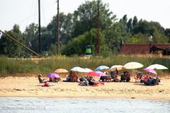 SUMMER AT THE RIVERSIDE ||  IN DE ZON LANGS DE RIVIER (Anne-Miek Bibbe) Tags: summer zomer sun zon rivier river strandje beach afgedamdemaas canoneos700d canoneosrebelt5idslr annemiekbibbe bibbe nederland 2018