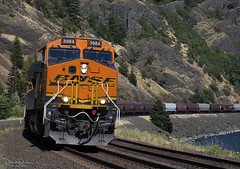 WB Grainer at Cooks, WA (Patrick Dirden) Tags: bnsf3984 et44c4 gevo ge generalelectric diesel locomotive engine rail railroad train freighttrain graintrain bnsf bnsfrailroad bnsfrailway burlingtonnorthernsantaferailroad burlingtonnorthernsantafe bnsffallbridgesubdivision skamaniacounty stateroute14 sr14 columbiarivergorge columbiarivergorgenationalscenicarea washington pacificnorthwest cookswa