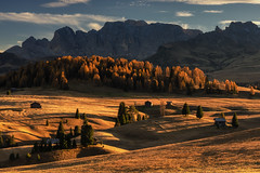 The Golden Meadow (Andrew G Robertson) Tags: dolomites dolomiti sunset golden hour alpe di siusi italy landscape meadow alpine alps