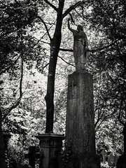 20180518-0113-Edit (www.cjo.info) Tags: 19thcentury 19thcenturyneogothic bw england europe europeanunion highgate highgatecemetery highgatecemeterywest london m43 magnificent7 magnificentseven magnificentsevengardencemeteries microfourthirds nikcollection olympus olympuspenfgzuikoautos40mmf14 olympuspenf penfmount silverefexpro silverefexpro2 unitedkingdom victoriangothic westerneurope architecture art blackwhite blackandwhite carving cemetery classiclens death decay digital flora girl gothic gothicrevival gravegraveyard legacylens manualfocus monochrome overgrown people plant sculpture statue stone stonework tree victorian woman wood wooded