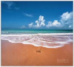 summer (Miguel Cádiz) Tags: cadiz playasdecadiz cádiz andalucía andalusia oladecalor calor arena largaexposición longexposure nature verano hot