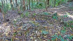Ruin_21 (Tony Markham) Tags: mine mining coal coalmine coalmining old ruins ruin abandoned disused wollongong illawarra bush bushwalk escarpment