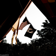Flags in Helen, GA (JuanJ) Tags: nikon d850 lightroom june art bokeh nature lens light landscape white green red black pink sky people portrait location architecture building city iphone iphoneography square squareformat instagramapp shot awesome supershot beauty cute new flickr amazing photo photograph fav favorite favs picture me explore interestingness wedding party family travel friend friends vacation beach helen georgia flag us mia 2018 balloon fest festival airforce marines army navy