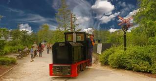 Little Train - 5709