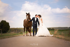Just Married (Kinga Pakula PHOTOGRAPHY) Tags: weddingphotography wedding justmarried love amour road loveroad hors weddingdress whitedress mariage mariageluxembourg country campagne captureyourdreamsphotographyluxembourg kingapakulaphotography emotionsphotography