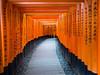 Fushimi Inari Shrine, Kyoto (TeunJanssen) Tags: 伏見稲荷大社 fushimiinarishrine fushimi inari shrine shinto kyoto torii gate gates trail mountinari japan travel asia backpacking traveling worldtravel worldtrip olympus omd omdem10 colourful 17mm
