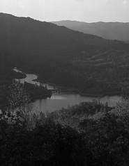 shasta lake on 4x5 film (Garrett Meyers) Tags: rbgraflex4x5 garrett meyers garrettmeyers 4x5film 4x5 graflex4x5 graflex blackandwhitefilm largeformat