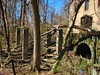 AN OLD RUINED BASEMENT IN APRIL 2018 (richie 59) Tags: ulstercountyny ulstercounty newyorkstate newyork unitedstates trees kingstonny kingston rondoutny rondout downtownkingstonny downtownkingston abandoned vacant spring richie59 overgrown abandonedbuilding vacantbuilding america outside weekday friday downtown 2018 april202018 april2018 2010s hudsonvalley midhudsonvalley midhudson ny nys nystate usa us city smallcity urban concretebuilding oldconcretebuilding oldbuilding weeds grass ruin building rotting