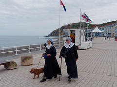 holy dog (watcher330) Tags: aberystwyth nuns sea dog lifeguards promenade