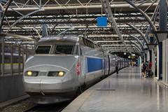 TGV Tri-Courant 4529 SNCF (Oliver R. Photography) Tags: tgv sncf sncb nmbs highspeed grandevitesse railway gare station railroad rail bahn zug brussel bruxelles bruxellesmidi brusselzuid