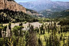 Gravelbar Creek (wyojones) Tags: wyoming absarokamountains shoshonenationalforest sunlightbasin sunlightcreek parkcounty gravelbarcreek braidedstream braidbar bedload gravel geology geomorphology stream creek channels wyojones np