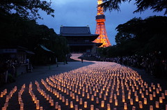Lantern Lights to Tokyo Tower (seiji2012) Tags: 東京 増上寺 七夕 提灯 東京タワー tokyo festival zoujyouji temple