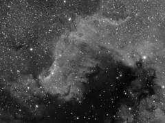 NGC7000, Luminance Only (ajynrynn) Tags: nebula ngc700 star sky night telescope space cloud deepspace constellation cygnus astrophotography astronomy astrophoto cosmos stellar longexposure