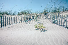 grassy windy sand dunes on the beach (DigiDreamGrafix.com) Tags: grass sunrise landscape sand grassy dunes color blue colorful vibrant sky beautiful beauty sunlight nature morning water orange sunny natural vivid wooden sea electric dawn tranquil calm clouds tools beach coast coastal ocean tide fence peaceful low reflections seaside miramar obx folly outerbanks florida sc southcarolina deston sticks pickets