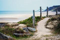 Path to the beach.. (jonbawden50) Tags: overstrand beach path norfolk seaside dof manual lens 55mm f18 7artisans fuji summers day