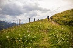 La Gruyère - Charmey / Ref.02301 (FRIBOURG REGION) Tags: sommer summer fribourgregion wandern hiking randonnée charmey lagruyère été fribourgrégion préalpes voralpen prealps lautachia