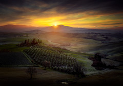 Dreamy sunrise (Massetti Fabrizio) Tags: sunrise sun sunlight sanquirico sunset siena tuscany toscana tree twilight landscape landscapes light iq180 italy italiy phaseone pienza panorami cambo rodenstock rural clouds countryside color