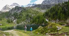 Hiking on the Italian Alps (giorgiorodano46) Tags: giugno2018 june 2018 giorgiorodano nikon valdaosta valléedaoste champoluc ayas alpi alpes alps alpen hiking lacdesalerdessus