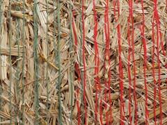 entwined (1elf12) Tags: entwined 7dwf straw stroh ballen feld field ernte harvest germany deutschland lochtum crazytuesdaytheme