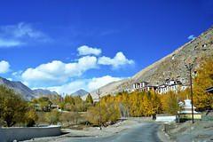 Ladakh in Autumn (pallab seth) Tags: landscape autumn fall nature colour highway kashmir india ladakh nubravalley valley jammukashmir color mountains himalayas