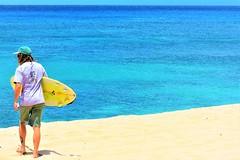 Surfer (thomasgorman1) Tags: man surfer candid nikon sea ocean horizon kaena oahu hawaii shore surfing surfboard