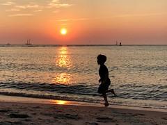 By the sea (saudades1000) Tags: chidhood bythesea summerdays menemsha martha'svineyard sunset running boy