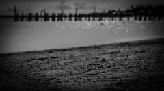 Summer memories (Rabican7-AWAY) Tags: newengland massachusetts capecod sand sunny beach ocean sea water monochrome blackandwhite bokeh sparkling surface warm pier shore sandybeach memories provincetown