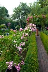 Kent Summer Gardens (Adam Swaine) Tags: tearooms gardens rosegardens penshurst kent kentishvillages england english englishvillages britain british uk ukcounties ukvillages canon summer rural ruralkent ruralvillages