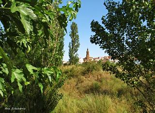 Tudelilla..( La Rioja)
