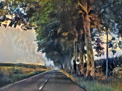 dipingendo una strada del Gers (fotomie2009) Tags: textured painting gers france francia road strada trees alberi platani viale driving ontheroad ddg tree lined avenue